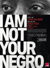 I'am not your negro
